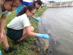 Foot waterways clean up