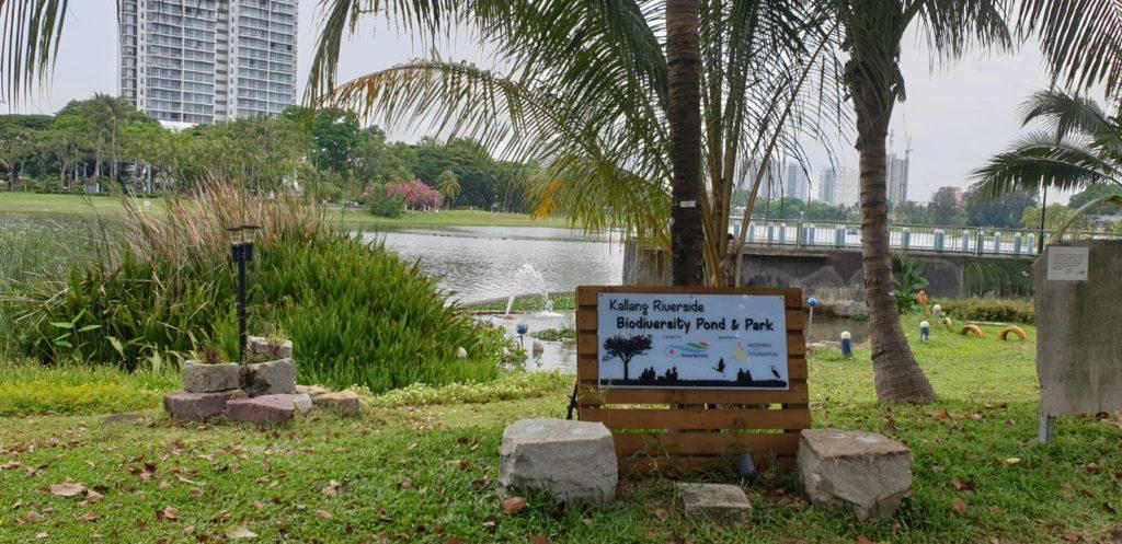 Development of Biodiversity Pond