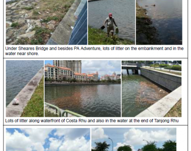 weekly report, environmental sustainability